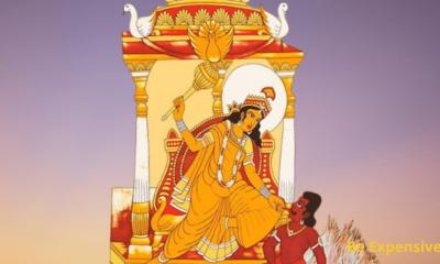 Baglamukhi Chalisa in Hindi | Baglamukhi image